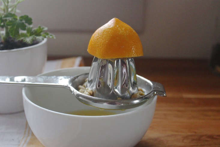 juicing-lemon-rose-geranium-lemon-cake-Justine-Hand-Gardenista