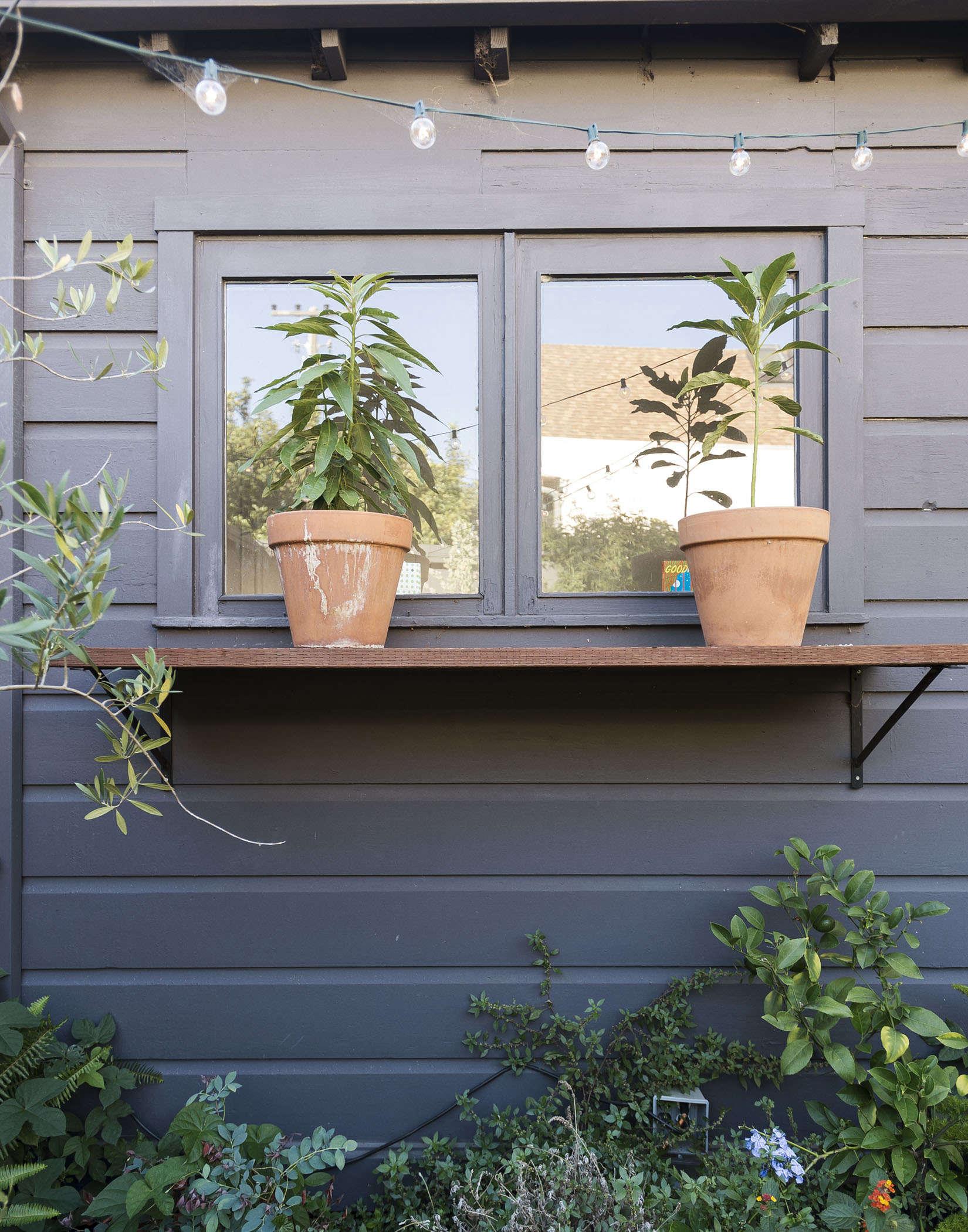 klein-garden-mission-san-francisco-gardenista-terra-cotta-pots