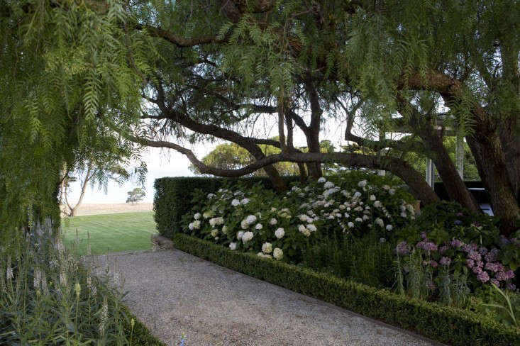 knot-garden-spray-farm-australia-paul-bangay-gardenista-1-2