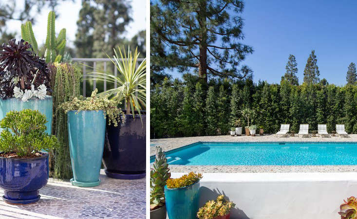 The clients replaced a kidney-shaped pool with a rectangular one that is easier to cover. On the other side of the eugenia hedge is the country club.