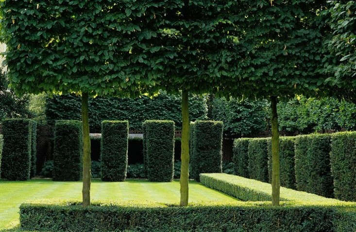 Hornbeams on repeat in a garden designed by Luciano Giubbilei. For more, see Garden Designer Visit: The Precocious Genius of Luciano Giubbilei.