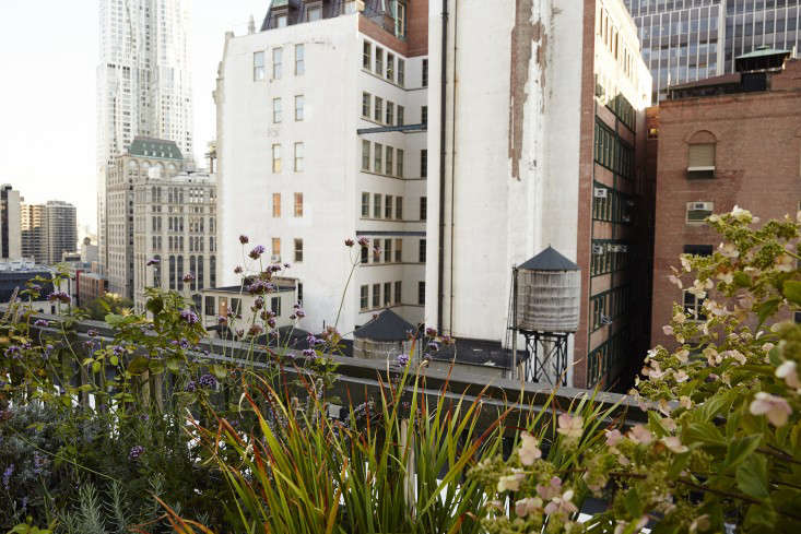 manhattan-roof-garden-water-tanks-gardenista