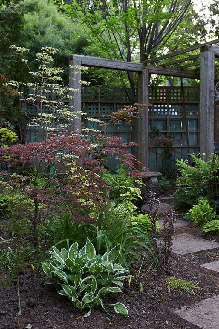 marjorie-harris-toronto-garden-gardenista-3