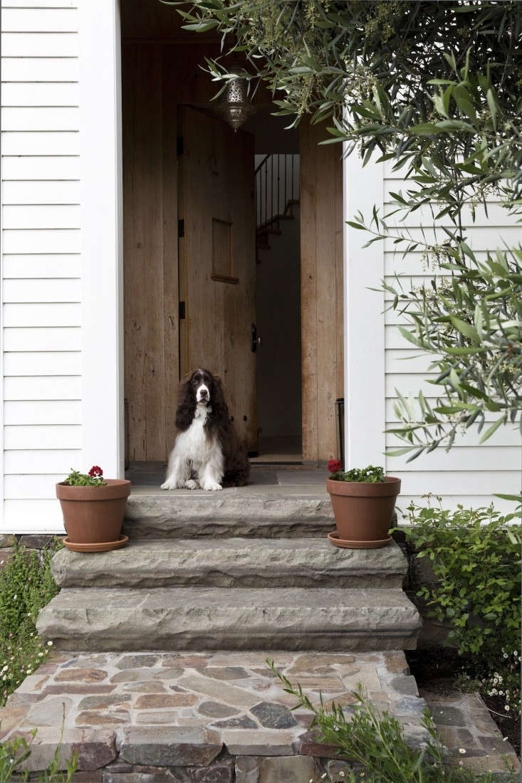 A the end of the path, wide stone steps (and Louis the springer spaniel) lead to a covered front stoop. Photograph by Nicole Franzen for Gardenista.