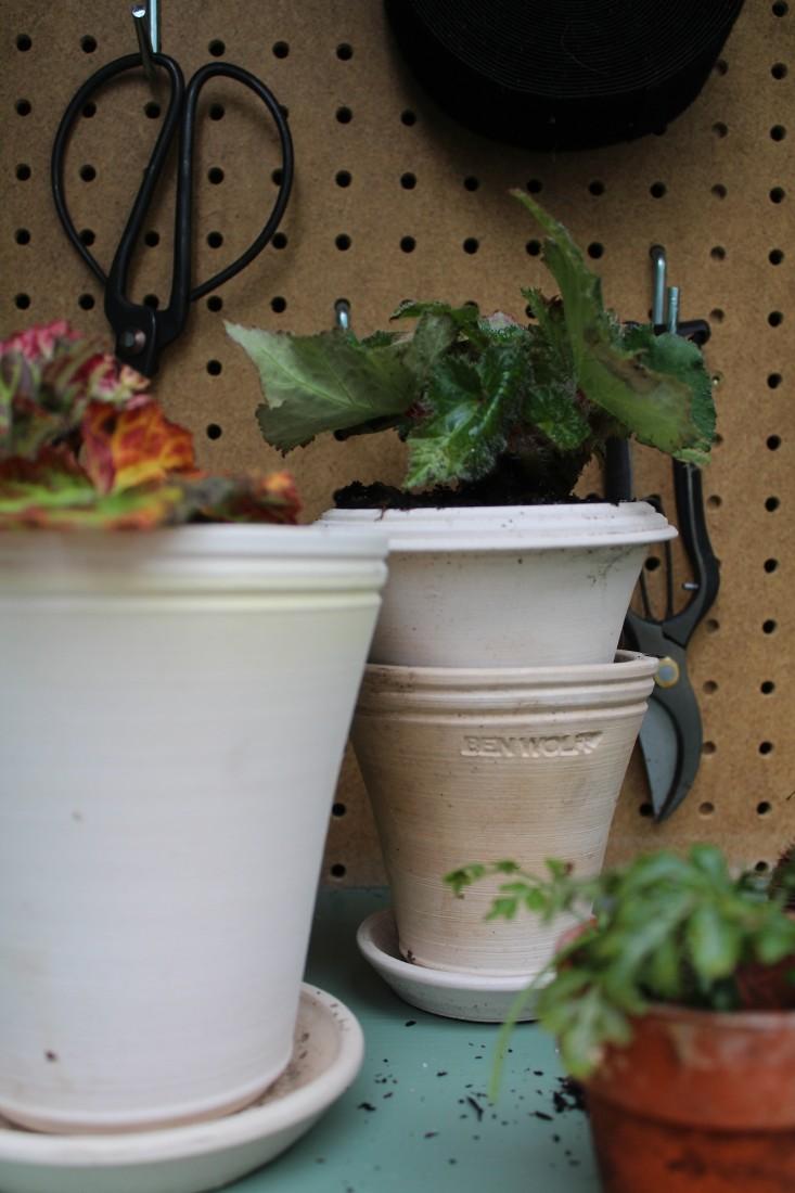 michelle-shed-ben-wolff-pots-1-gardenista