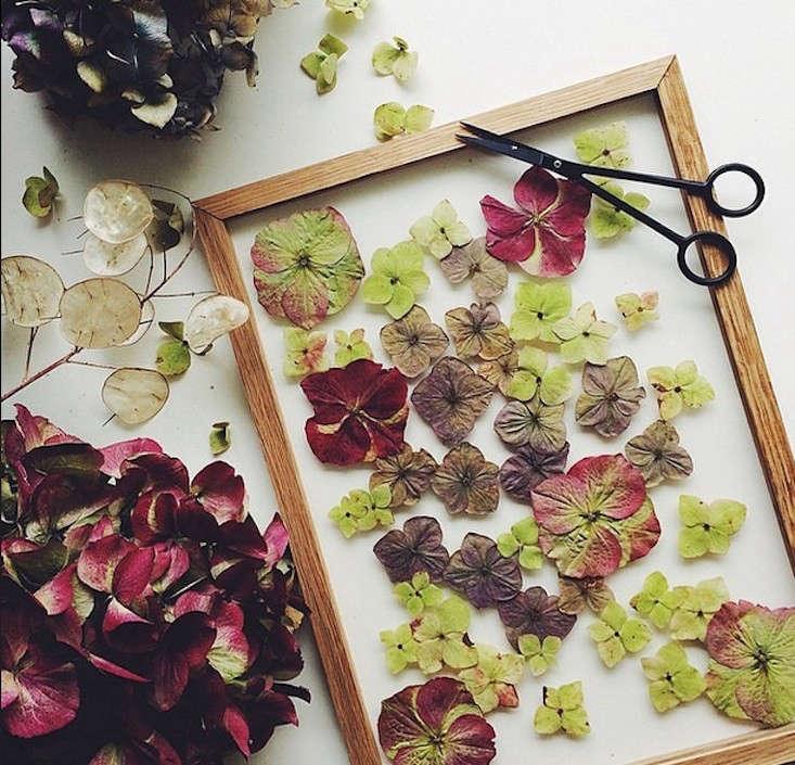 moebe-picture-frame-botanical-wall-art-gardenista
