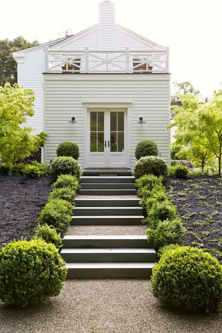 mulch-black-wood-chips-boxwood-gardenista