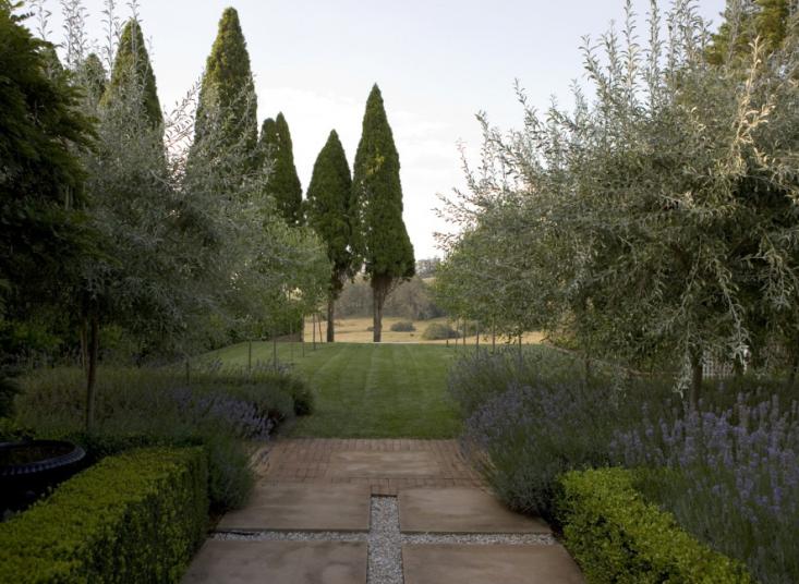 peter-fudge-lavender-garden-australia-gardenista-3