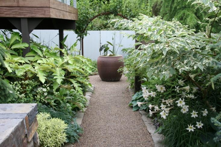 rehab-diary-eugene-oregon-planter-paths-dogwoods-lilies-gardenista