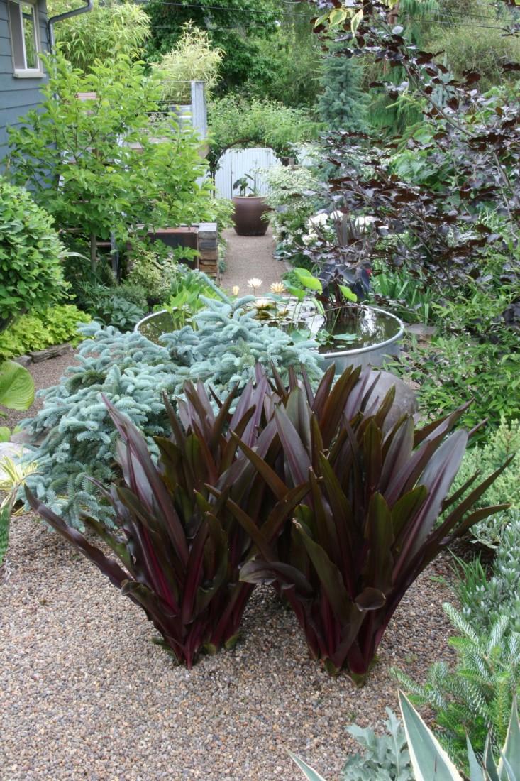rehab-diary-eugene-oregon-silver-black-palette-path-gravel-gardenista