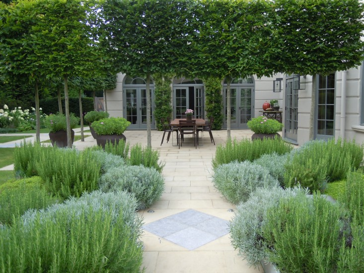 With a directive to build a garden with year-round interest, Miers planted four raised beds of evergreen herbs–rosemary, lavender, and thyme–for use in the kitchen. The owners of the house live in Sardinia for the majority of the year but return to England in the winter.