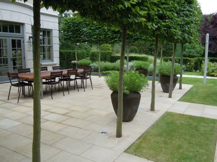 Pleached Carpinus betulus–or Hornbeam–trees help shade a large dining terrace and, Miers explains, &#8