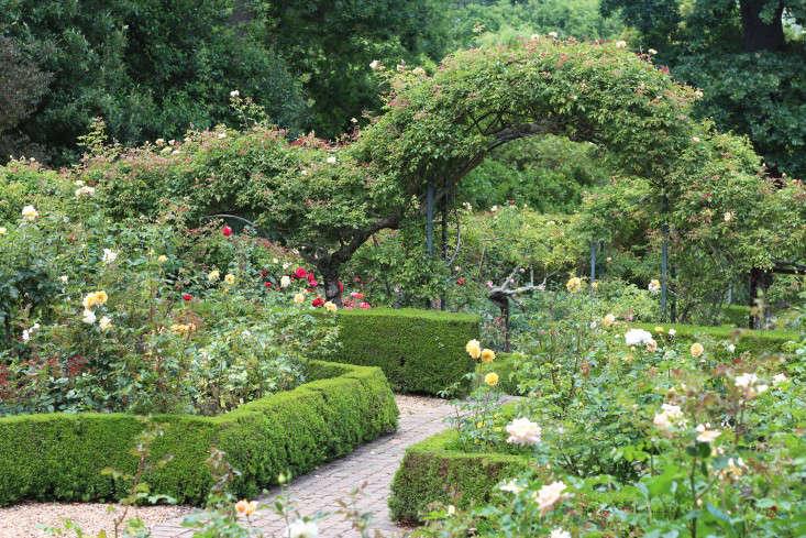 rosegarden-Cellars-Hohenort-Marie-Viljoen-Gardenista