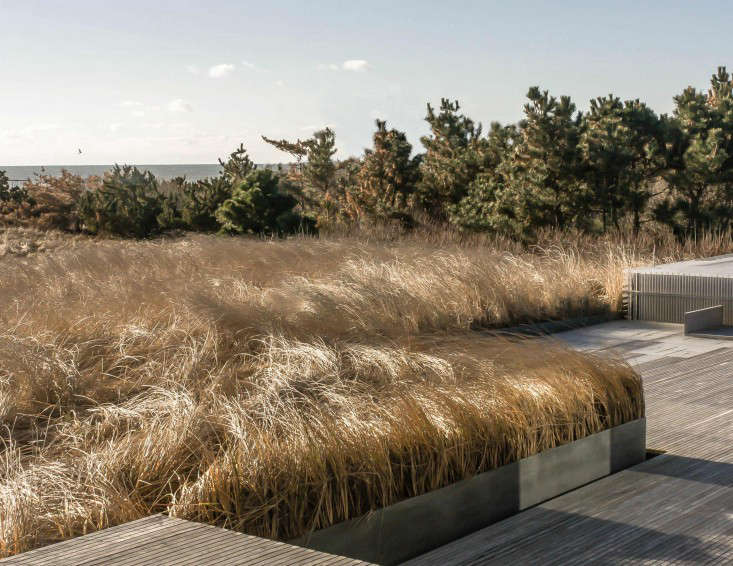 Where deck meets dune, steel retaining walls ease the transition and gloss over changes in elevation.