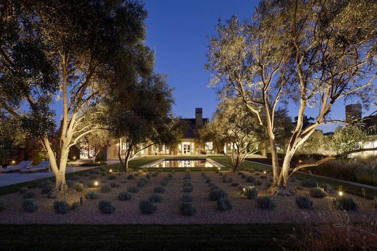scott-lewis-vineyard-retreat-grasses-northern-california-17-gardenista