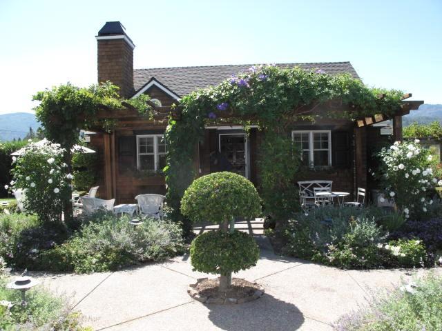 scott-lewis-vineyard-retreat-grasses-northern-california-19-BEFORE-gardenista
