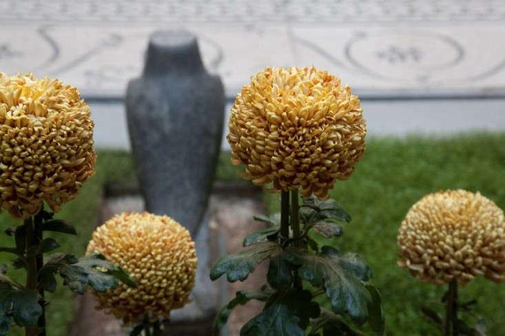 Chrysanthemums fill the courtyard at the Isabella Stewart Gardner Museum in Boston. See more atGarden Visit: The Isabella Stewart Gardner Museum.