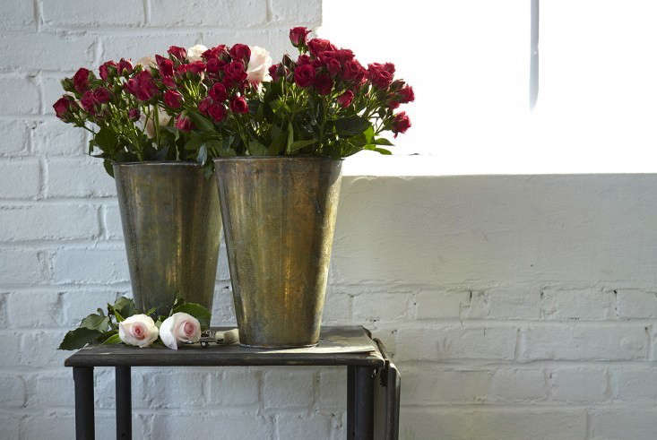 From The Bouqs,  Depth red roses are grown on eco-friendly, sustainable farms; $60. Photograph by Stephen Johnson.