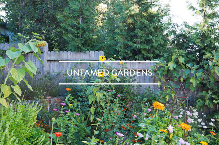 toc-untamed-gardens-gardenista