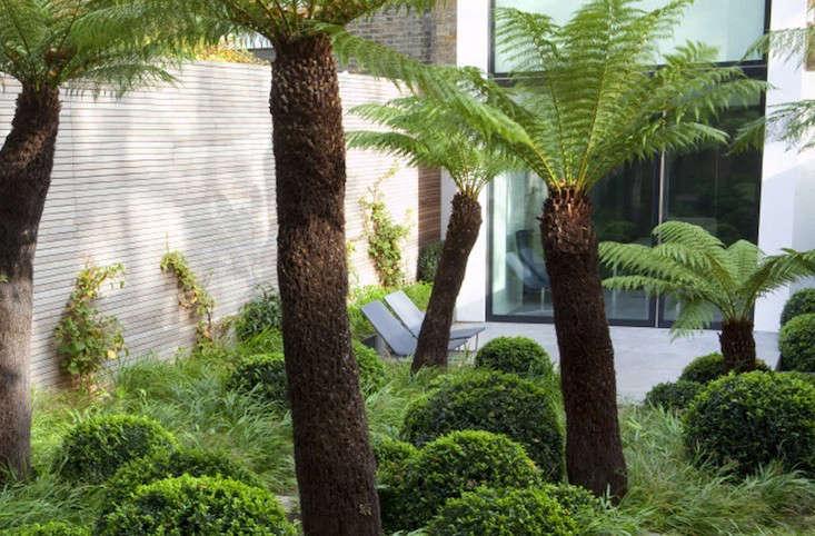 Tom Stuart-Smith designed this London garden