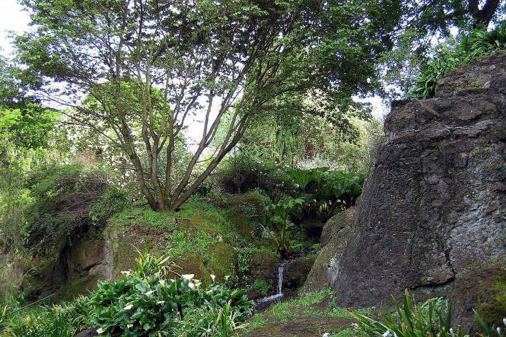torecchia-ital-garden-dan-pearson-gardenista-1.jp12
