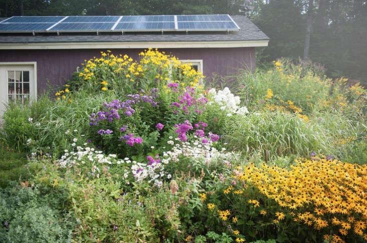 vermont-garden-colorful-perennials-solar-panels-gardenista