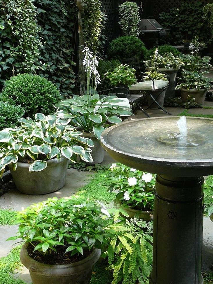 Sawyer   Berson designed these gardens on pretty Perry Street in Manhattan