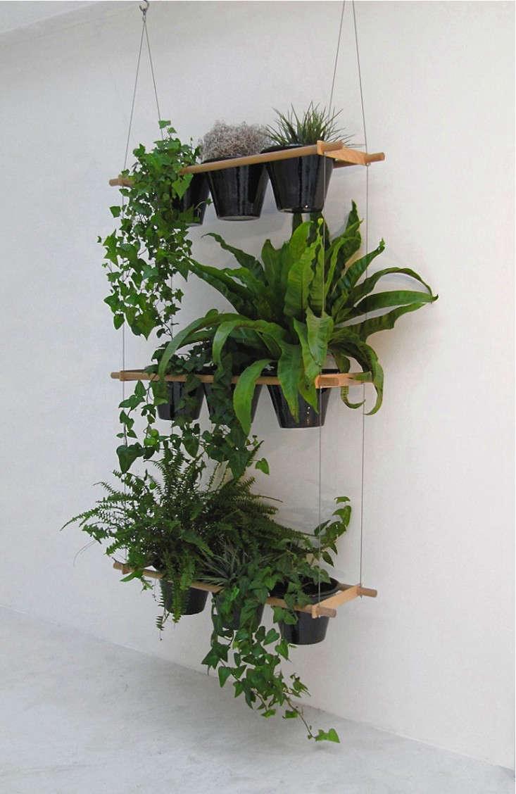 window-box-wall-shelves-gardenista