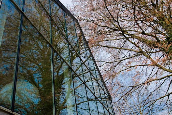 Belgian-Greenhouse-Carl-Verdickt-13