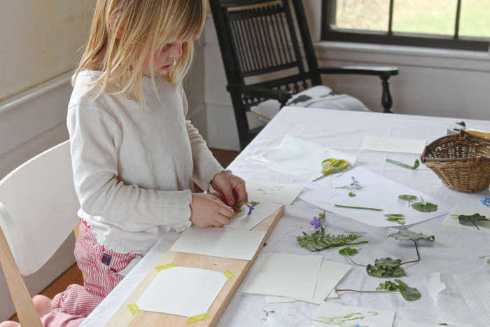 After securing a piece of paper with tape to our board, Solvi began arranging the leaves and flowers on top.