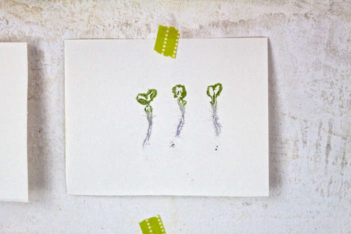 Make leaf prints like this simple trio of sprouts