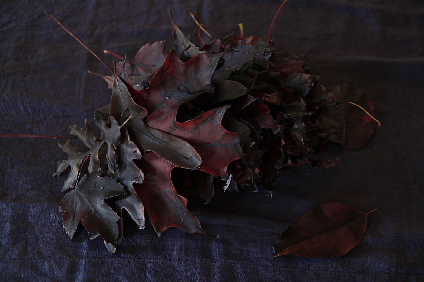 Halloween%20table%20with%20Black%20Leaves%2C%20waxed%20leaves%2C%20by%20Justine%20Hand%20for%20Remodelista.jpg