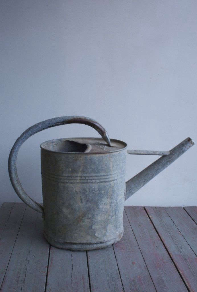 Vintage-watering-can-Agapanthus-Interiors-Gardenista