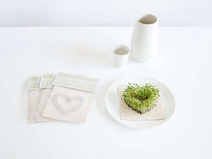 diy-heart-shape-microgreens-sprouts-leafling-grow-paper-2-gardenista