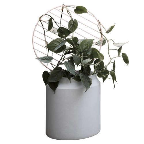 ferm-living-round-plant-wall-circle-trellis-gardenista