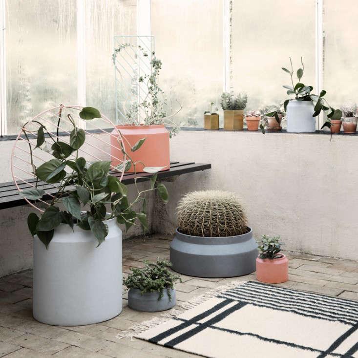 planters-plant-trellis-germ-living-gardenista