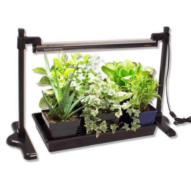 seed-starting-grow-light-stand-gardenista