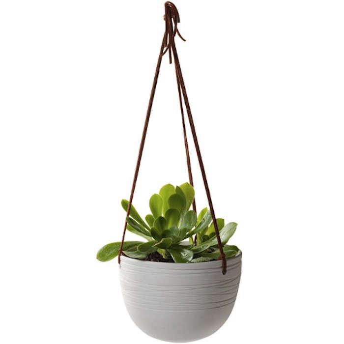 Scribble_planter