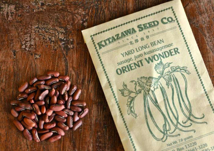 A packet of from 45 to 50 Orient Wonder Yard Long Beans seeds is $3.79 at Kitazawa Seed Co. Photograph by Janet Hall.