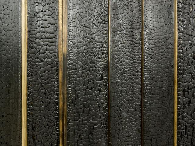 Charred larch on a facade in the Czech Republic. Photograph courtesy of Aloading=