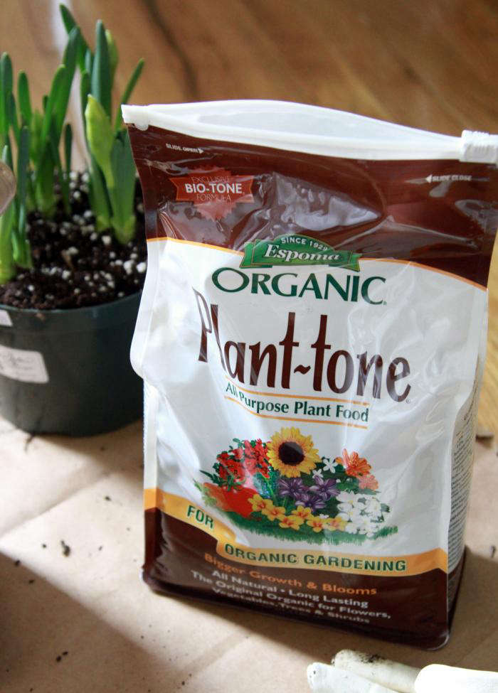 To amend the soil, you can also add compost that you blend yourself at home or purchase from a farmer friend.