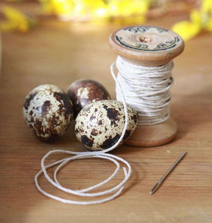 700_quail-eggs-and-twine