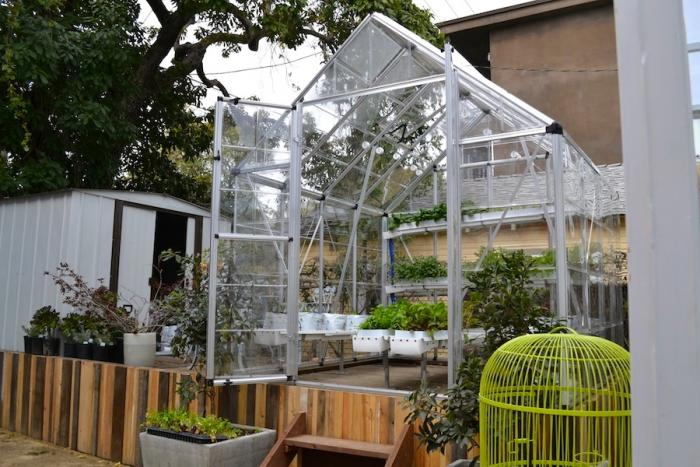 Ilan Dei Venice greenhouse