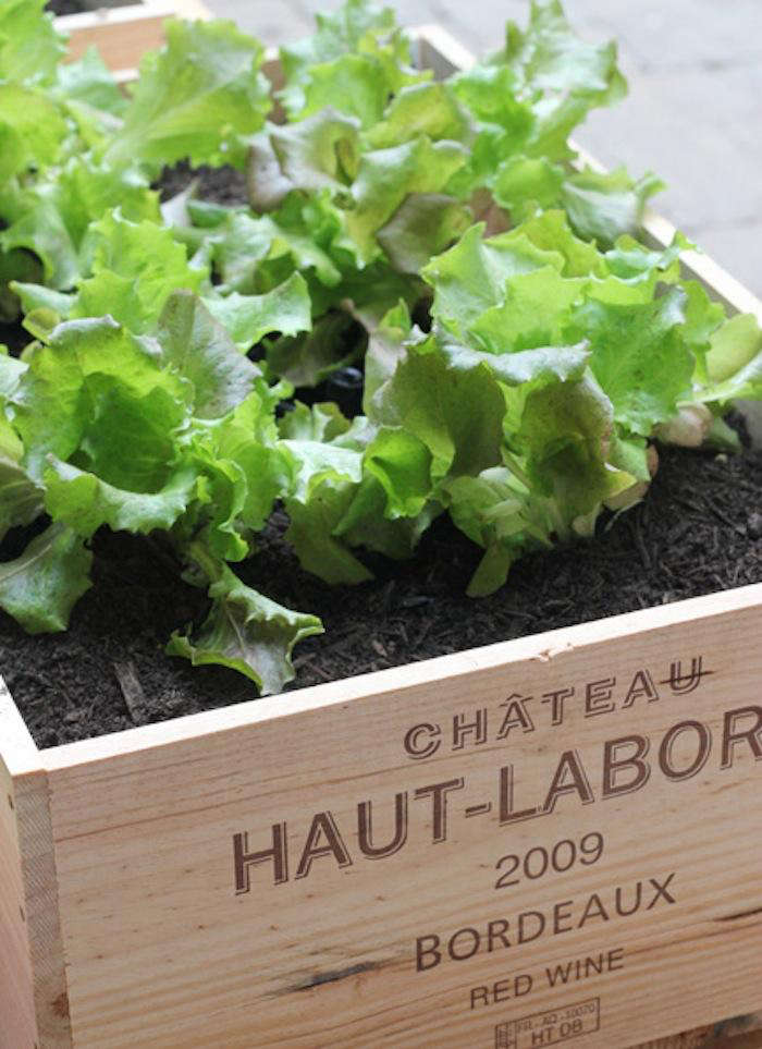 Photograph courtesy of LLH Designs, from DIY: Raised Beds Made From Wine Boxes.