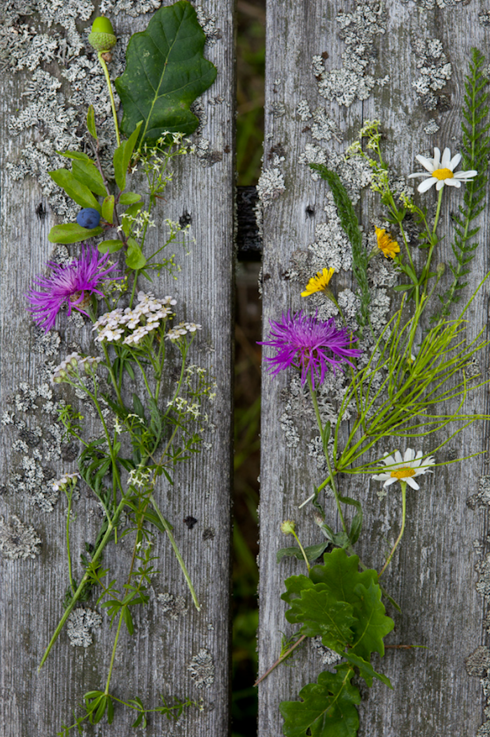 This week the Remodelista editors visited new favorite restaurants and shops in Stockholm and Copenhagen. On our list? The enchanted gardens around a stone castle turned hotelnear Stockholm. Shown here: found wildflowers and fruit.
