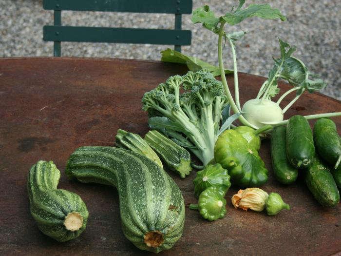 700_700-gardenista-edible-garden-100a