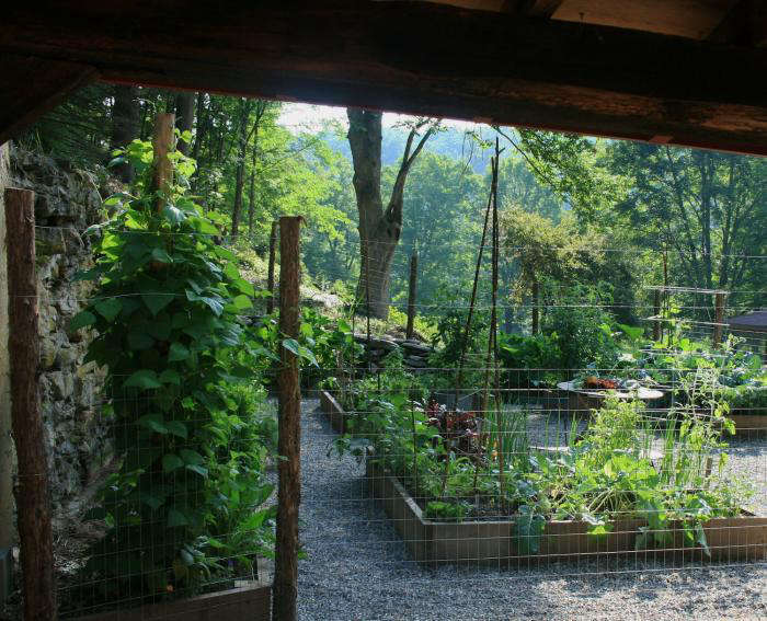 700_700-gardenista-edible-garden-132b