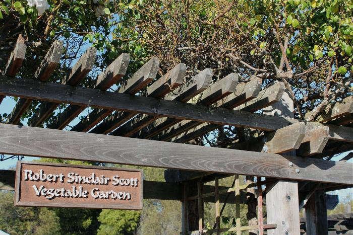 700_redwoods-sign