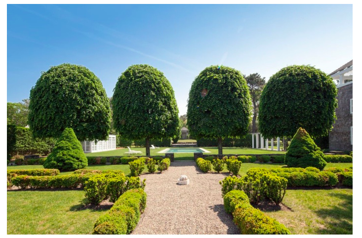 At the .5-acre Hamptons estate that actor Neil Patrick Harris bought last month, a symmetrical row of lollipop trees creates order at the approach to the swimming pool. Photograph via Town & Country.