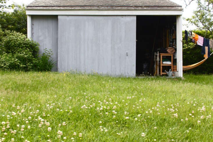 A clover and dandelion lawn has its own beauty. Photograph by Justine Hand.